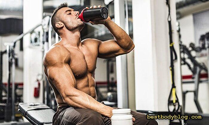 Сывороточный протеин и гейнер | Самые популярные послетренировочные напитки