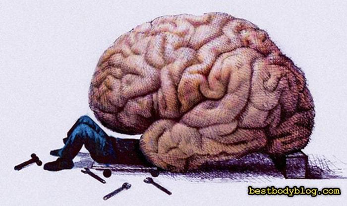Низкоуглеводная диета ухудшает работу мозга