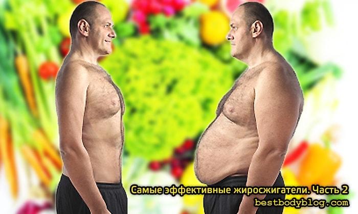 Наиболее эффективные добавки для похудения