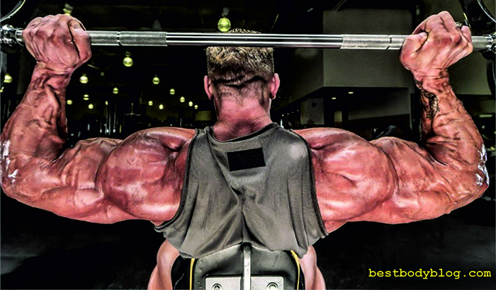 Тренировка плеч | Жим штанги из-за головы