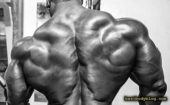 Трапеции - мышцы верха спины добавляющие всей фигуре невероятной мощи