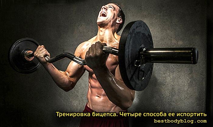Тренировка бицепса
