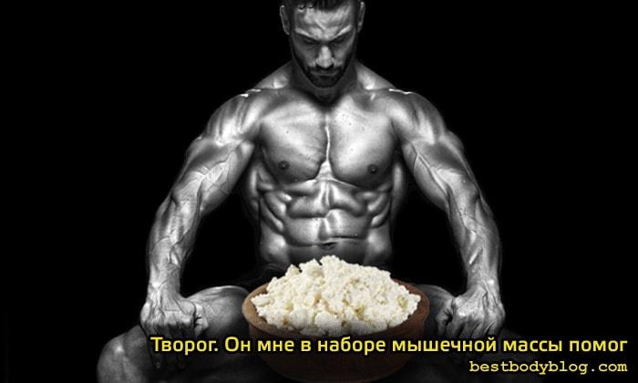 Творог для набора мышечной массы
