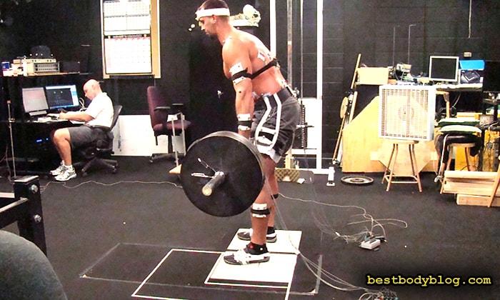 Так определяют лучшие упражнений на каждую мышечную группу