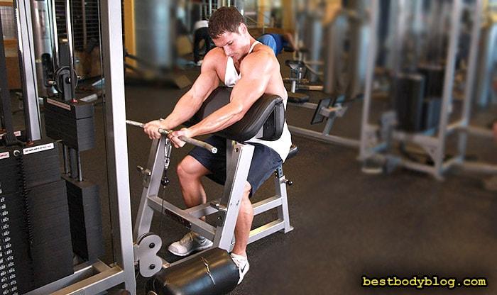 Лучшие упражнения на бицепс | Сгибание рук на нижем блоке на скамье Скотта