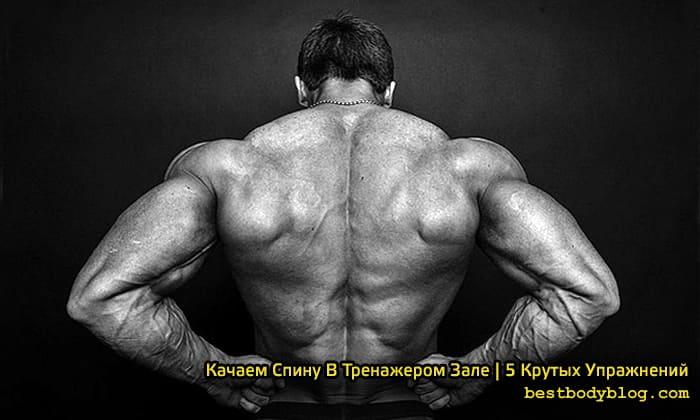 Упражнения на спину для мужчин