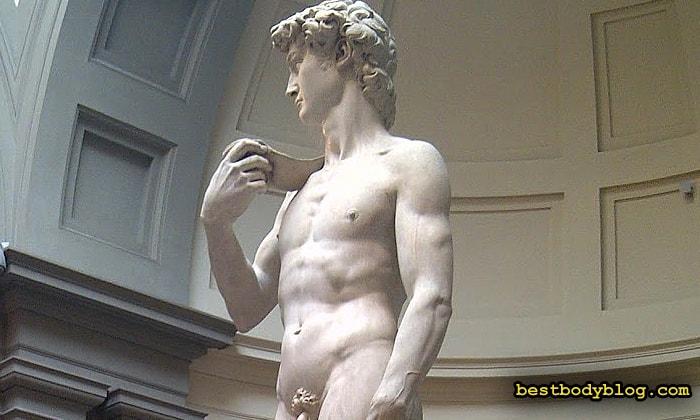 Статуя Давида. Золотой стандарт пропорционального телосложения