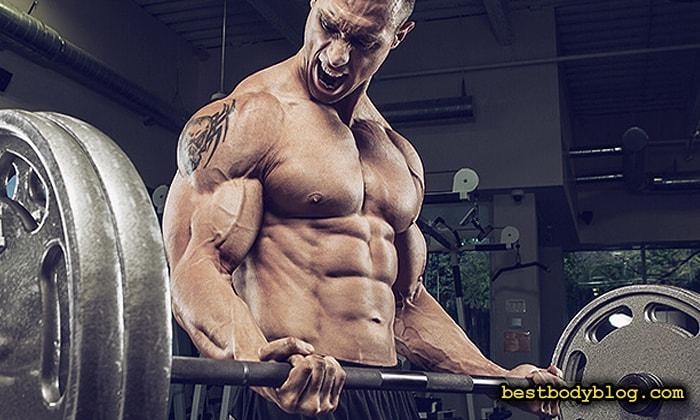 В период набора мышечной массы гейнер является лучшим спортивным питанием для роста мышц