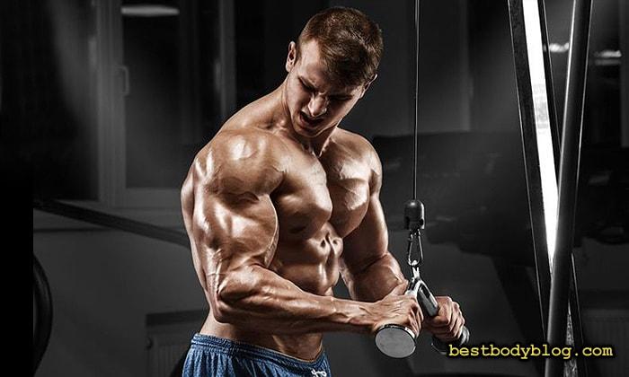 Лучшие упражнения на трицепс. Разгибание рук на блоке с изогнутой рукоятью