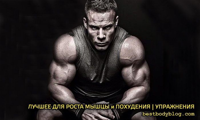 Самые эффективные упражнения для набора мышечной массы