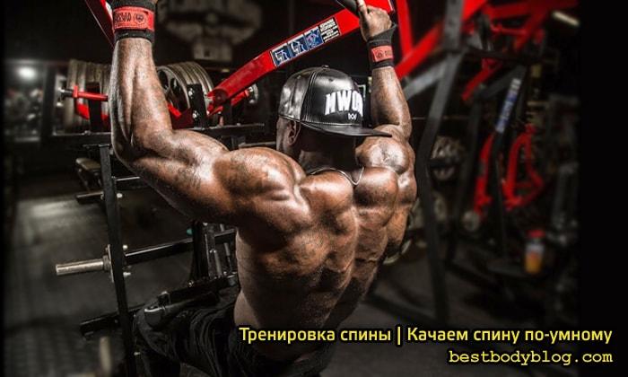 Тренировка спины. Качаем спину по-умному