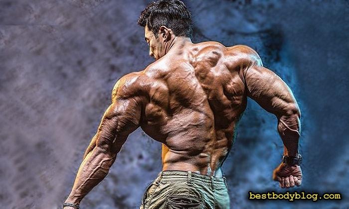 Большую часть тренировки спины нужно посвящать упражнениям для широчайших