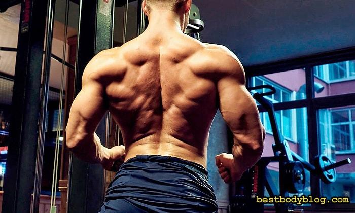 Во время выполнения упражнений на спину, лопатки нужно сводить