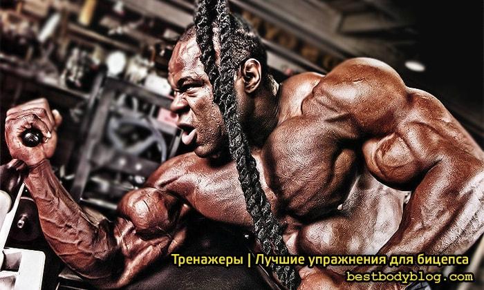 Тренажеры | Лучшие упражнения для бицепса