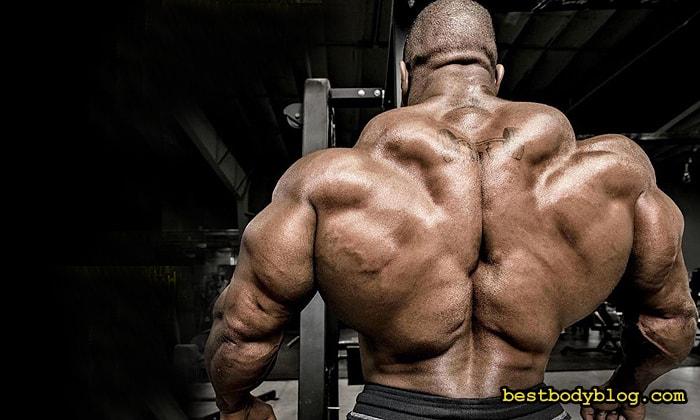 Мышечную массу растит не вес - а стресс!