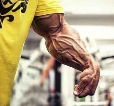 Тренировка плечелучевой мышцы