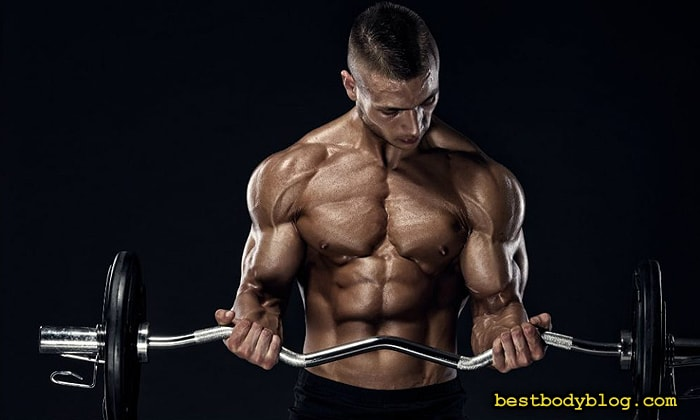 Подъём штанги на бицепс стоя | Упражнение для двуглавой мышцы №1