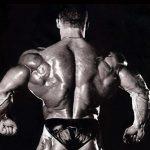 Как сделать спину шире
