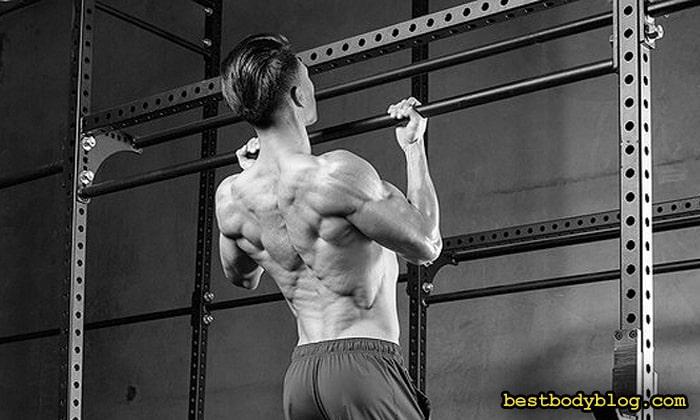 Подтягивания обратным хватом нагружают самый низ широчайших мышц спины