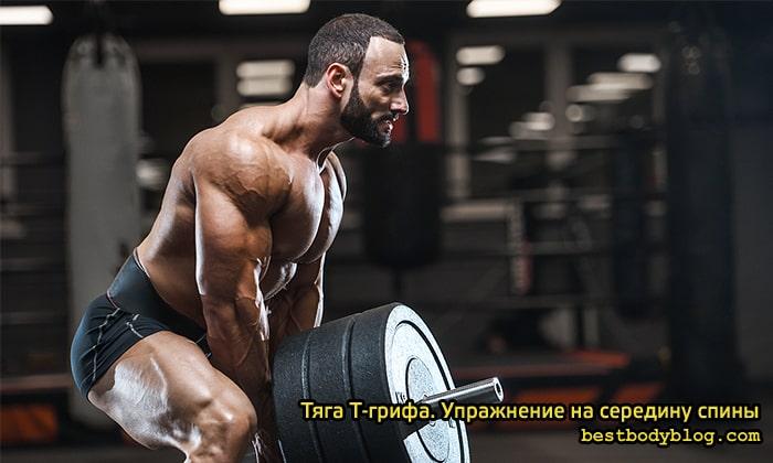 Тяга Т-грифа. Упражнение на середину спины