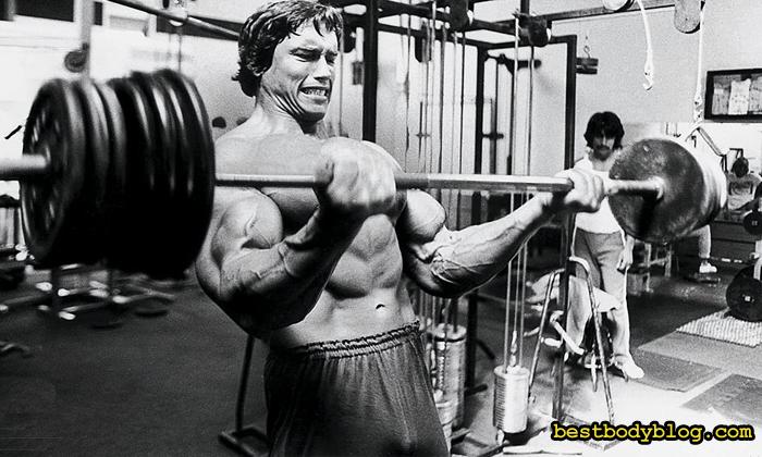 Арнольд тренировка бицепс