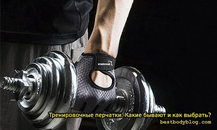 Чем спортивные перчатки отличаются между собой?