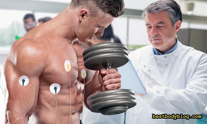 Бодибилдинг и сердце | Тренировки увеличивают объём сердца и повышают выносливость