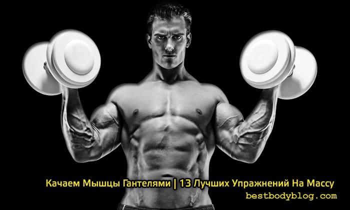 Качаем мышцы гантелями