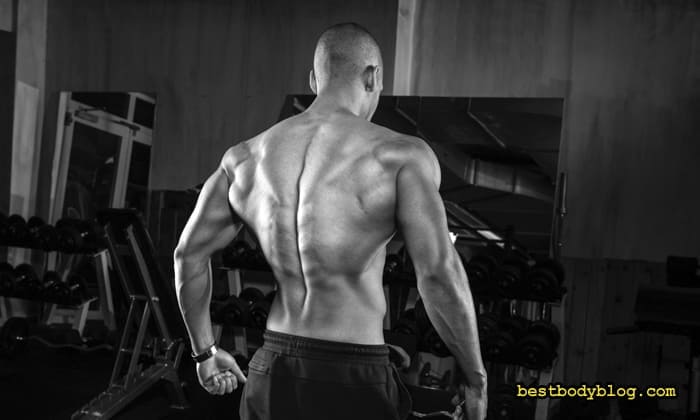 Тренування спини для чоловіка